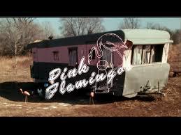 pink flamingos the movie