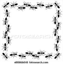 ant graphic