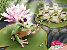 frogs singing