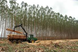 forestry machines