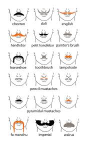 different styles of mustaches