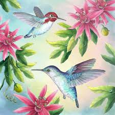 hummingbird paintings