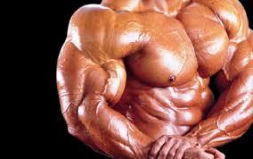 mens body building