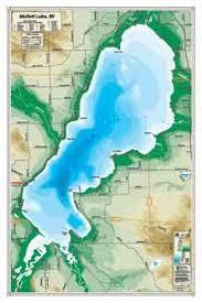 mullett lake