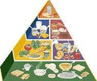 food chart for children