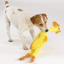 chicken dog toys