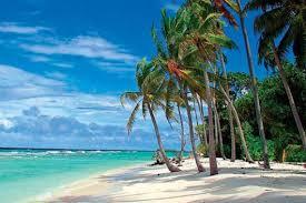 Umm�Off To Barbados�