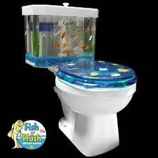 aqua fish tanks