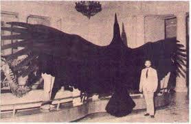 giant mammals