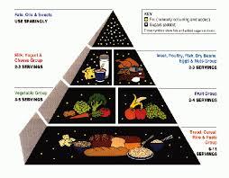6 food nutrients