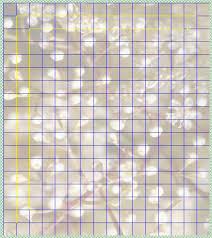 100 pixels