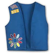 daisy girl scout uniform