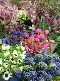 names of spring flowers