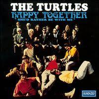happy together turtles