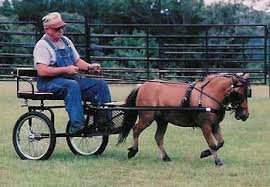 miniature horse harnesses