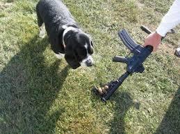 automatic pooper scooper