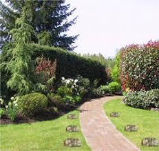 piedras jardin