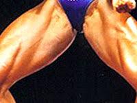 Plusieurs petites douleurs chroniques : adducteurs et épaule Adducteur2