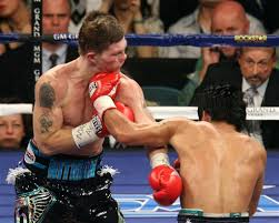 pacquiao knockout punch