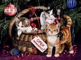 cat christmas wallpaper