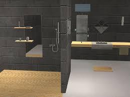 cameras bathroom