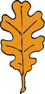 clip art oak leaf