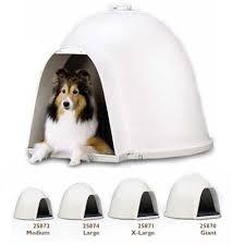 igloo dogs