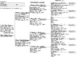 four generation pedigree chart