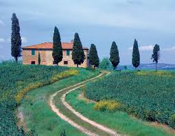 pictures from tuscany