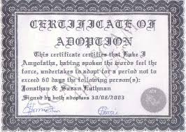 adoption paper