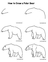 polar bears drawing