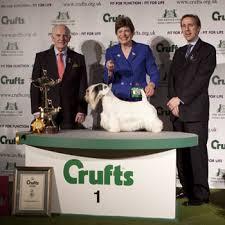 crufts champion 2009