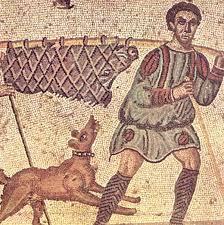 Un cazador transportando un jabalí herido