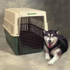 plastic dog cages