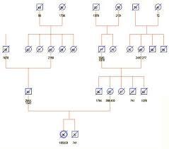 medical genogram