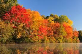 canada fall foliage