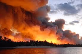 forest fire smoke