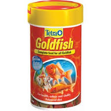 gold fish food