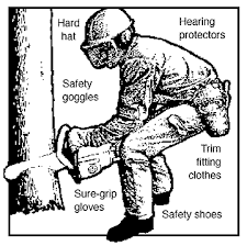 chain saw safety equipment