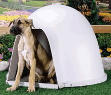 igloo dog kennel