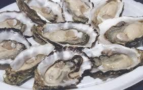 Milford Oyster Festival