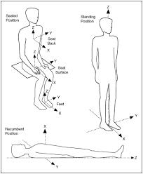 human measurement