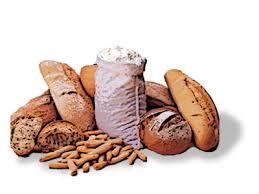 alimentos que contienen monosacaridos