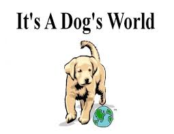 a dogs world