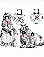 prairie dog targets
