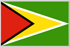 guyana flag pics