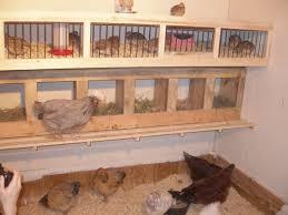 quail coop plans