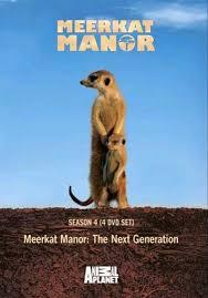 meerkat dvd
