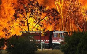 bushfires pictures