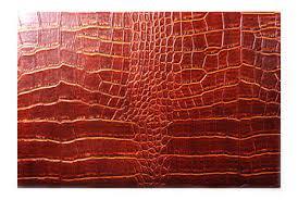 crocodile leather purses